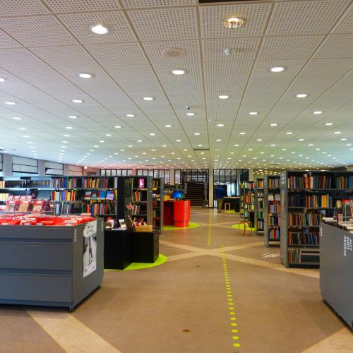 bibliotekene star for fall